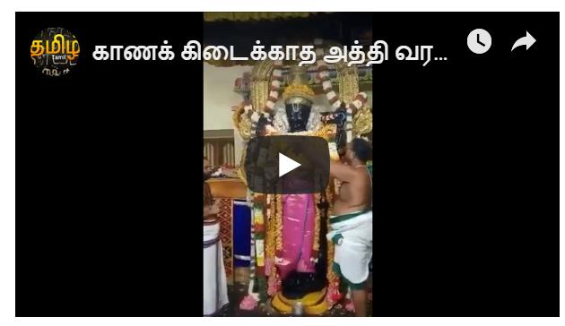 காணக் கிடைக்காத அத்தி வரதர் தீப ஆராதனை நேரடி வீடியோ காட்சிகள்