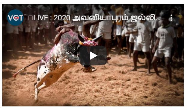 2020 அவனியாபுரம் ஜல்லிக்கட்டு திருவிழா
