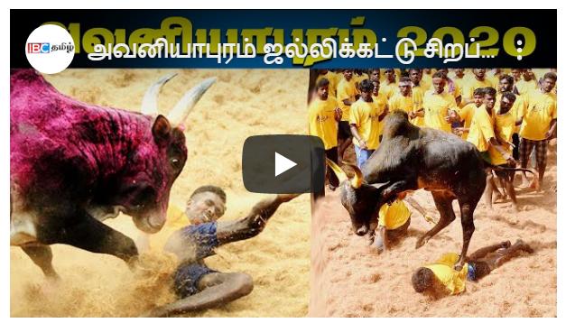 Avaniyapuram Jallikattu 2020 Live