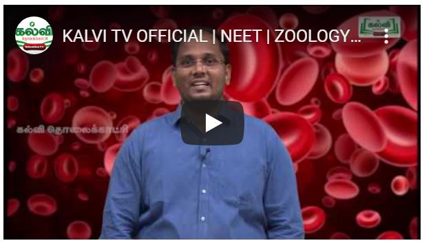 KALVI TV OFFICIAL NEET ZOOLOGY
